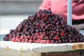 Cherries, Bethlehem, Palestine. Photo Btlhm-shops_9587