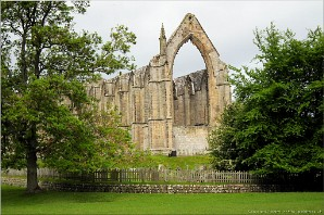 Bolton Abbey, Yorkshire Dales | Yorksdales-13224