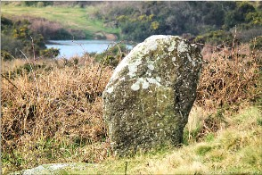 Tregeseal stone circle, Cornwall | Tregeseal-12234