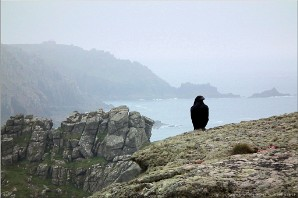 Raven, Pordenack Point, Cornwall | Landsend-29112